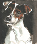 Aquarel hond Freddy