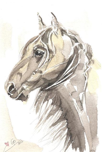 Aquarel schilderij van paard Paard Thomas my Love