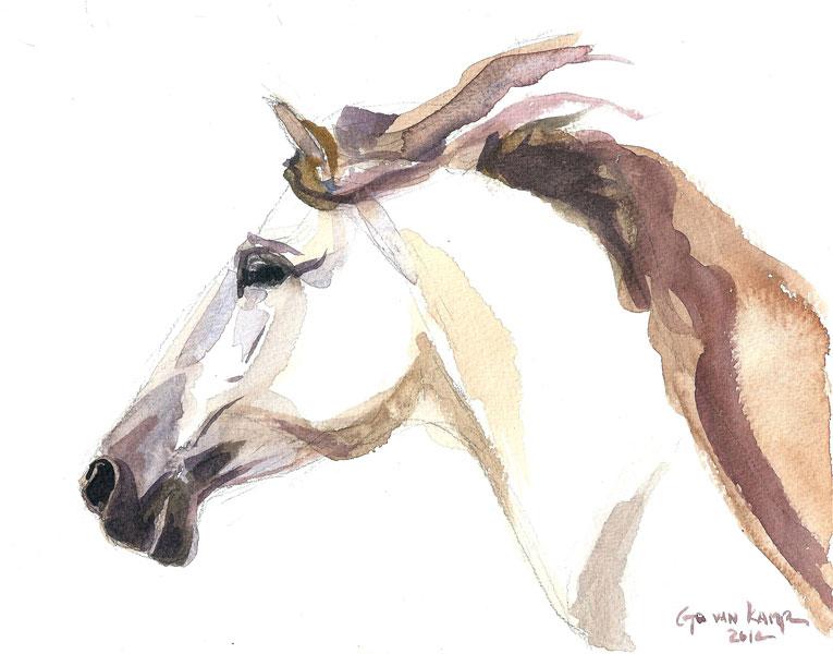 Aquarel schilderij van paard Paard Julia