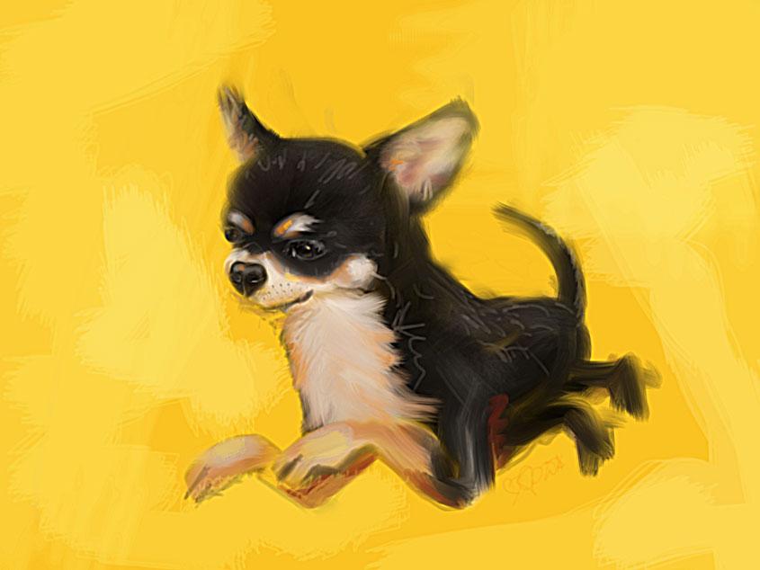 Digitaal schilderij van Chihuahua Yellow Splash