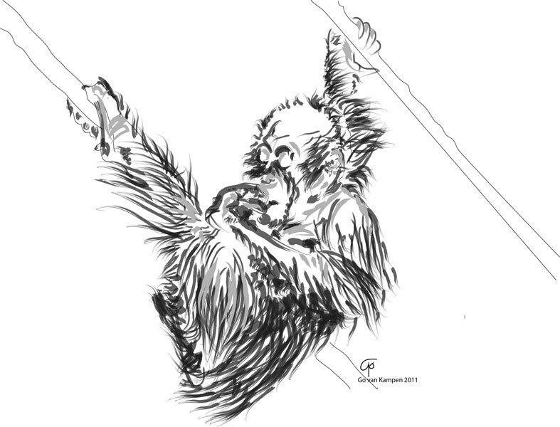 Digitaal schilderij van Orang Oetan Baby 2