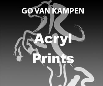 Acryl Kunst Prints door Go van Kampen