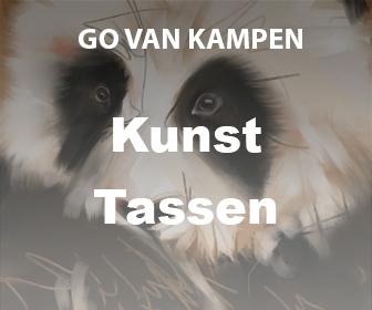 Kunst Etuis door Go van Kampen