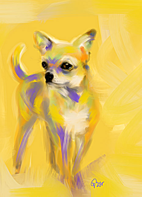 Digital painting Chihuahua Josh