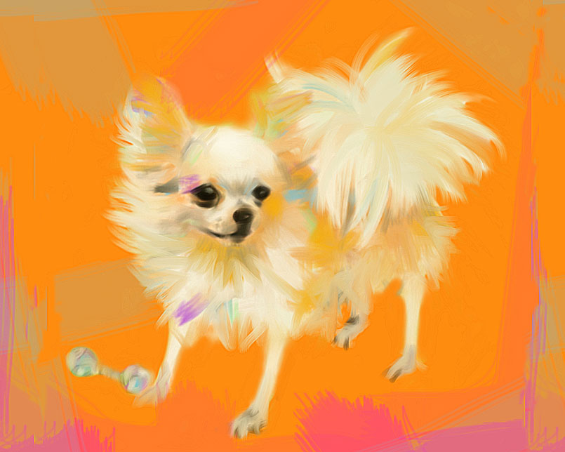 Digital painting Chihuahua Orange