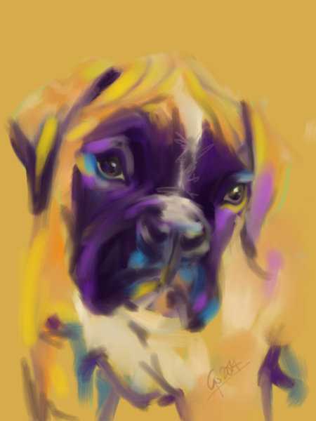 Digital painting Dog Boxer Bobby