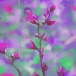 Digital painting nature Flower Power