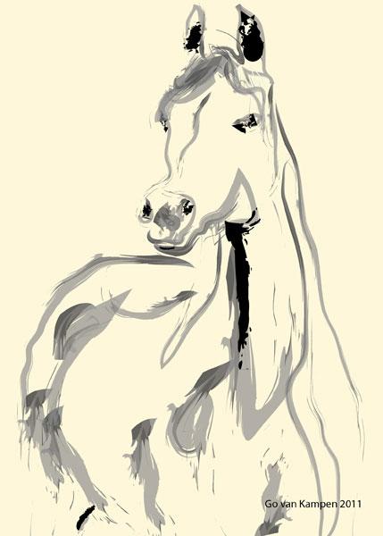 Digital painting Arabic Horse