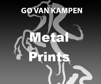 Art Metal Prints by Go van Kampen