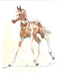 Horse painting watercolor foal Pinto
