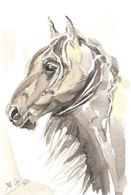 Watercolor painting Horse Thomas My Love